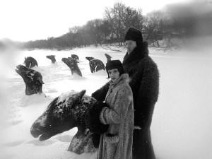 Ces chevaux seraient morts gelés subitement...