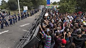 Une invasion face  à la frontière serbe.