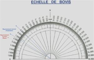 Échelle de Bovis