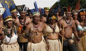 Les communautés autochtones ont alarmés les médias et les groupes de conservation locale lorsque Aotlcp-Awak, ou l'arbre Mère dans les dialectes locaux, a été signalé scié par une machinerie lourde.