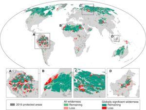 Les régions les plus impactées sont l'Amazonie et l'Afrique centrale, avec des pertes respectives de 30% et de 14%.2016 Elsevier Ltd. Published by Elsevier Inc