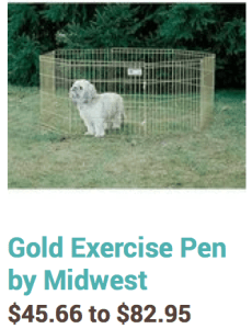 gold exercise pen