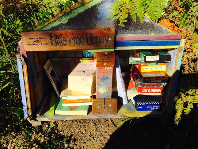 The Little Free Library box in my neighborhood.