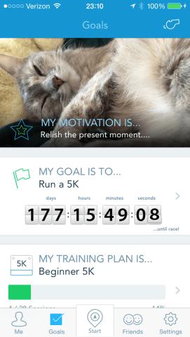RunKeeper Goals view