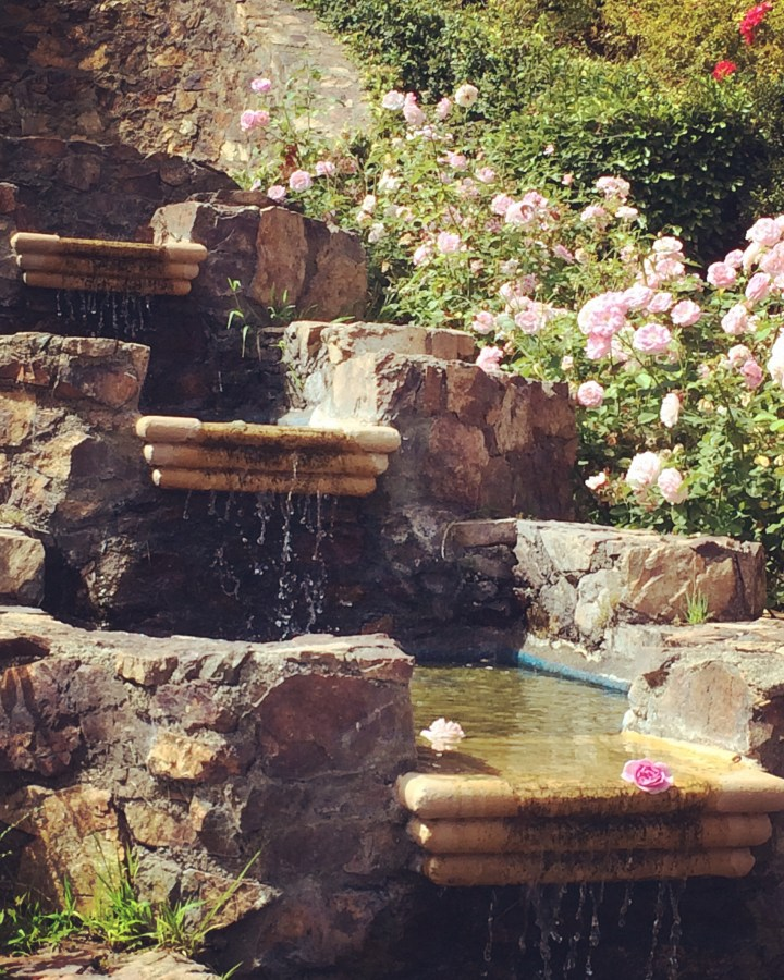 Cascading fountain at the Rose Garden.