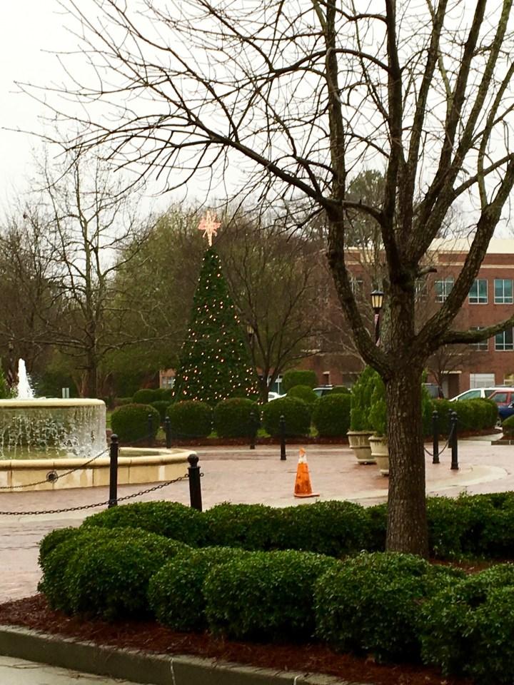 Meadowmont Village Circle.