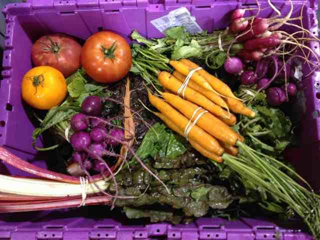 Case Study: Inbound Marketing for the Vermont Foodbank
