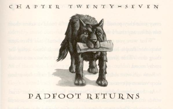 Harry Potter 4 c27 Padfoot Returns