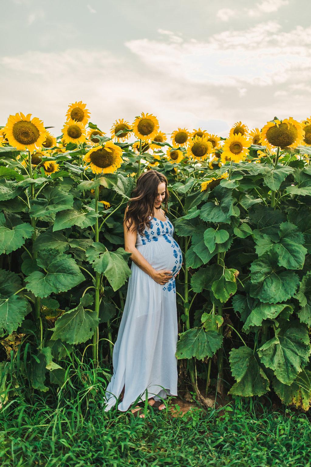 Sunflower-Maternity-Nashville-Tennessee-Field-Batey-Farms-1