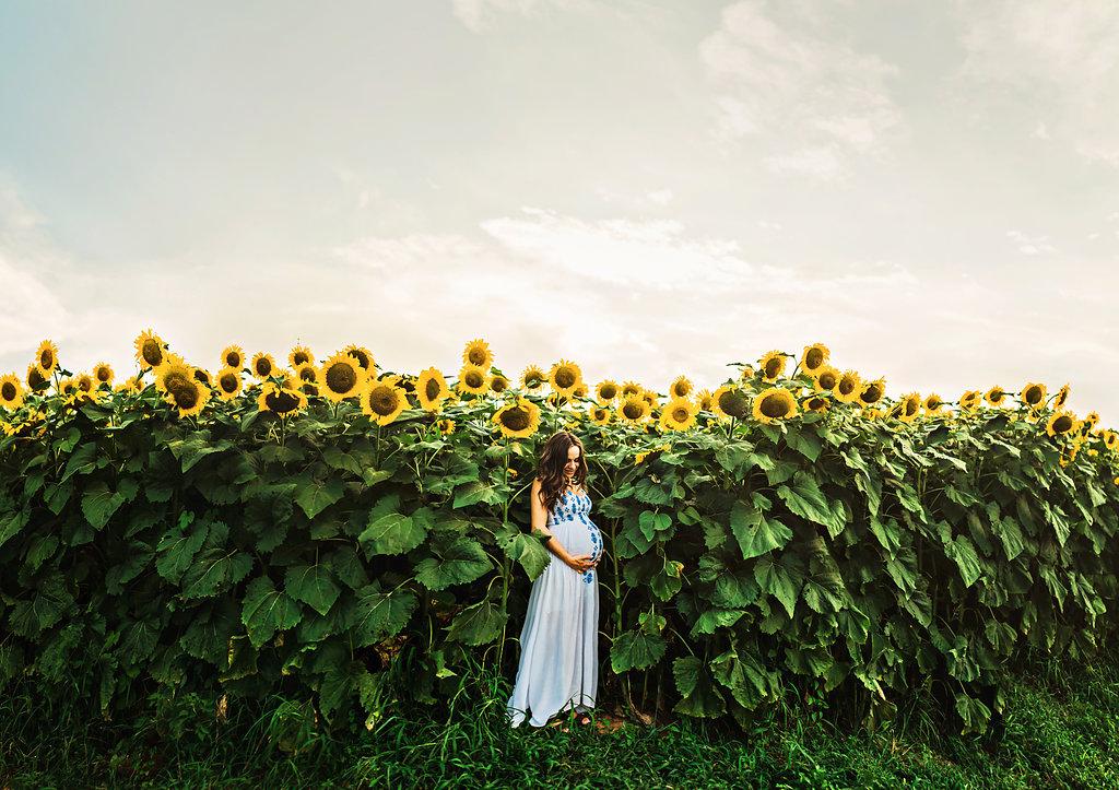 Sunflower-Maternity-Nashville-Tennessee-Field-Batey-Farms-24