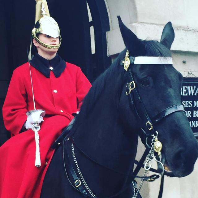 The horseguards of london