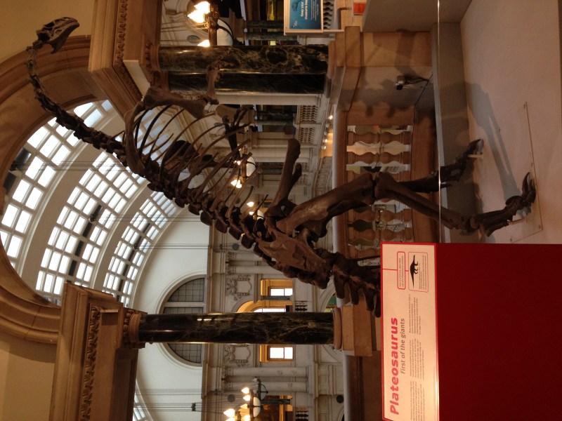 Day 36 Bristol Museum & Art Michelle