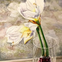 White Amaryllis in Glass Vase, Original watercolor painting by Michelle C. East