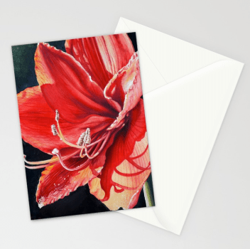 Amaryllis Sunlight NOTE CARDS