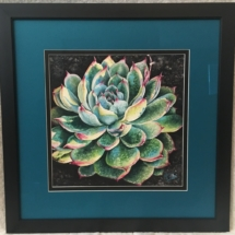 Succulent in the Morning Light Framed