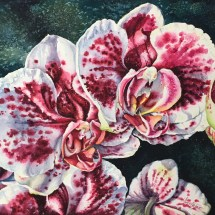 Pink and White Orchids watercolor painting