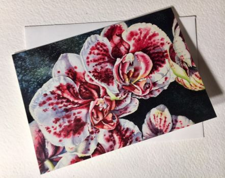 Pink and White Orchids Note Cards