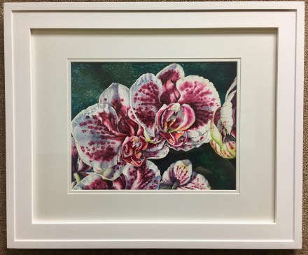 Pink and White Orchids #1 original watercolor painting by Michelle C. East
