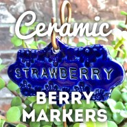 Berry Markers