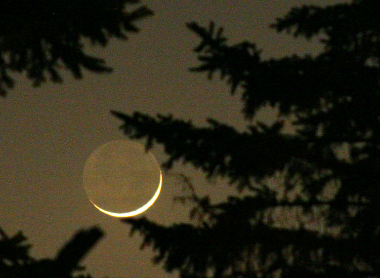 Sliver of a New Moon