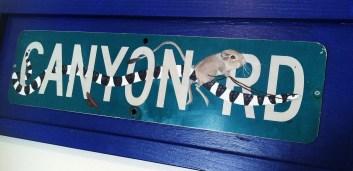 """Canyon Rd."""