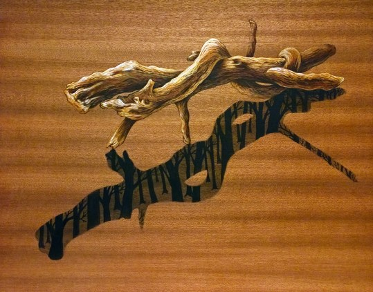 Twisted-Branch-With-Living-Shadow-11x141