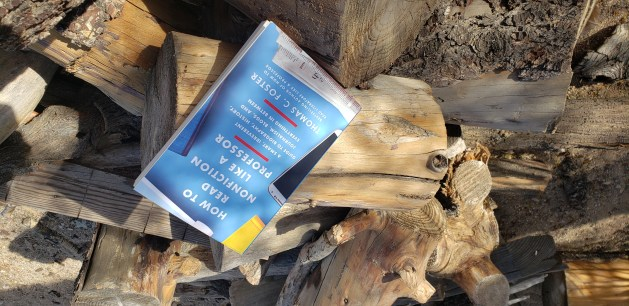 Picture of the new read on a pile of desert firewood.