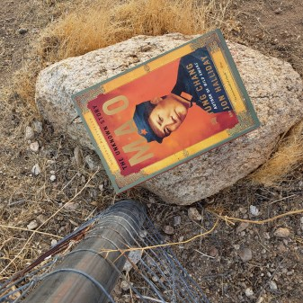 Mao book cover on a desert background.