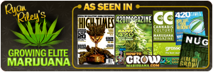 The Ultimate Guide to The World's Best Marijuana Growing System