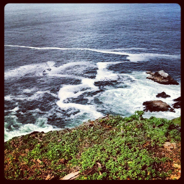 Point Reyes Cliffs #photography #landscape #travel #California