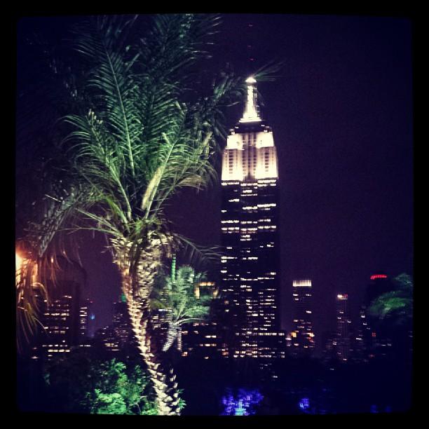 Empire State Building & Palm Tree #newyork #landmark