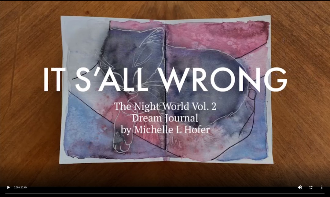 It S'all Wrong Video Link - The Night World Vol. 2 Dream Journal by Michelle L Hofer