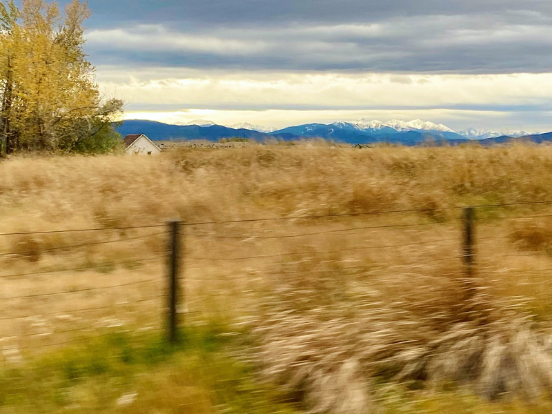 Drive By Montana, Michelle L Hofer, 2020