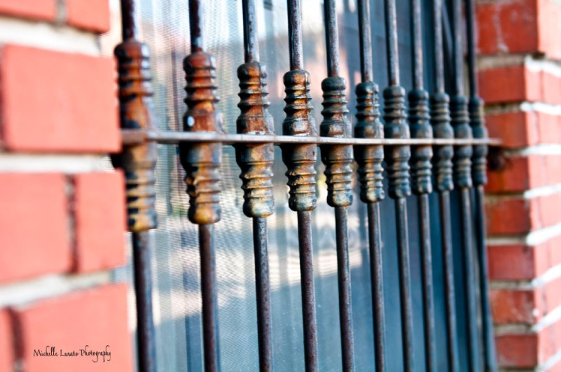 A close up of the fencing.