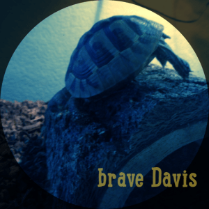 Brave Davis