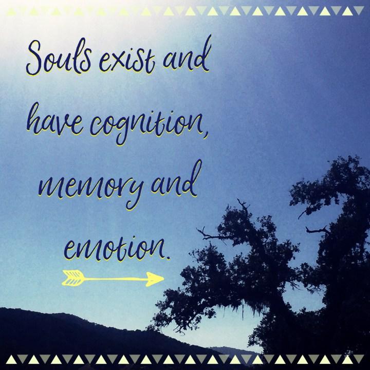 Do souls die?