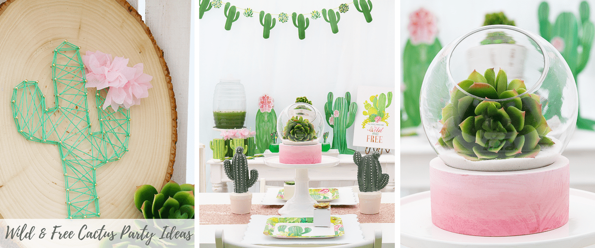 Cactus Party Ideas (1)