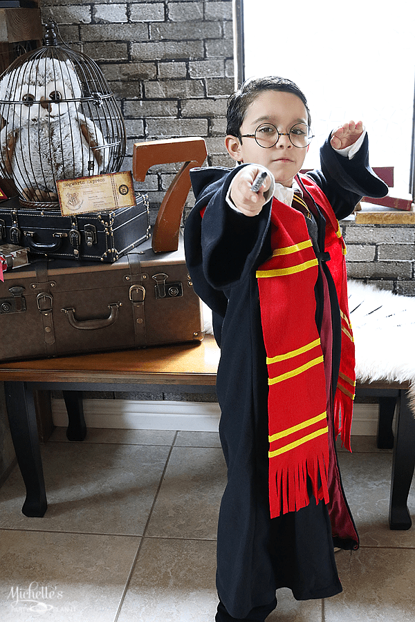 Harry Potter Wizard Costume