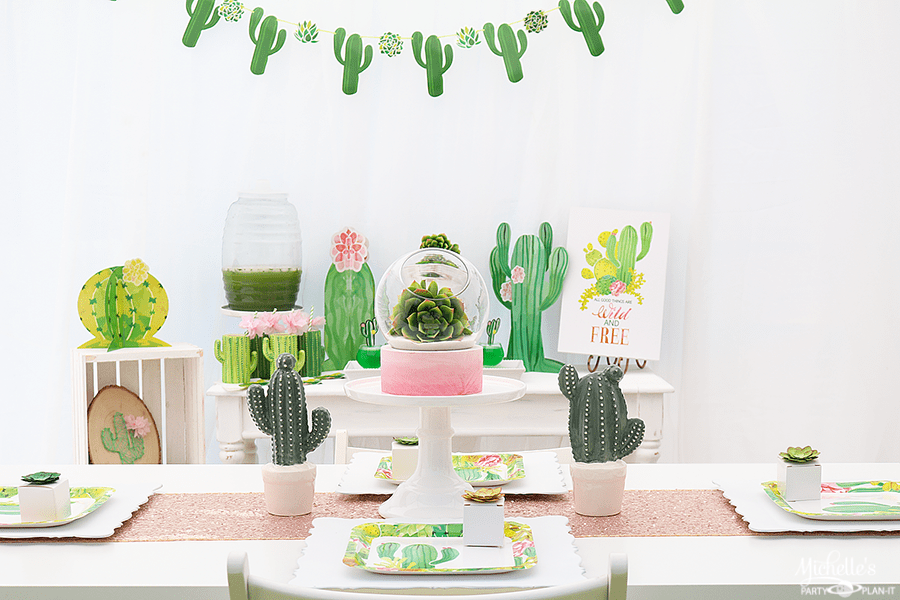 Wild And Free Cactus Party Ideas Michelles Party Plan It