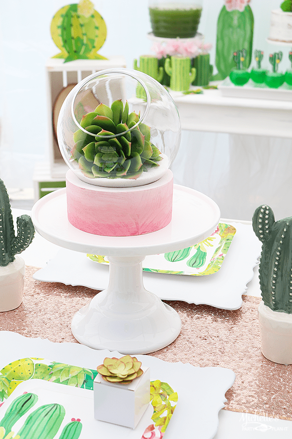 Succulent Terrarium - Cactus Party Centerpiece