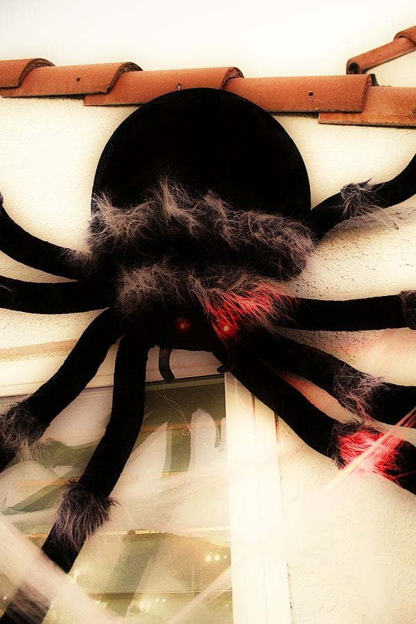 Easy spider porch decorating ideas 4