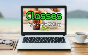 Classes By Michelle Walling