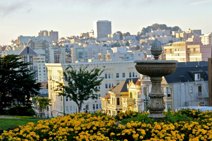 the golden hour in alamo square