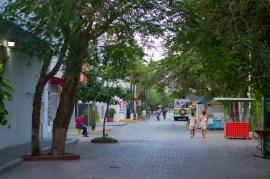 early morning quinta