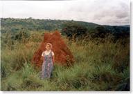 uganda-termitehill