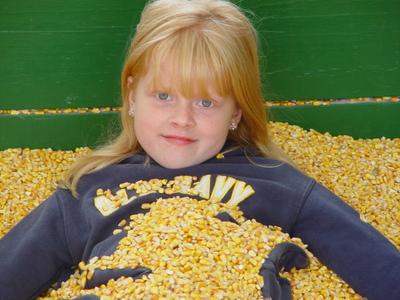 Corn_maze_007
