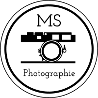 Logo MS Photographie à AMBERT