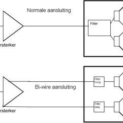 Bi Amp Wiring Diagram Dpdt Switch Amping Vs Diagrams Repair Scheme