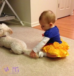 baby pulling puppy's tail diary of a dog