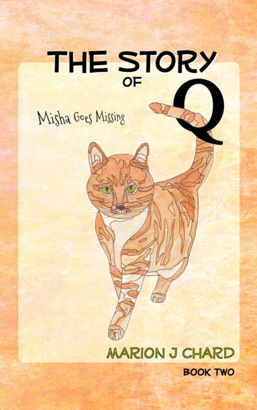 The Story of Q – Misha Goes Missing